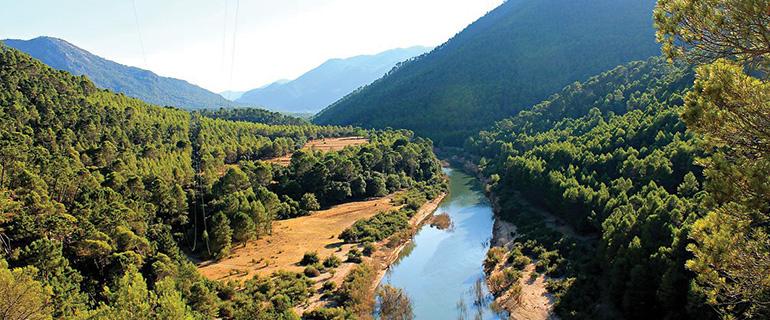 LiveYourTour presenta su informe sobre potencialidades turísticas desarrollado por CONSIDERA